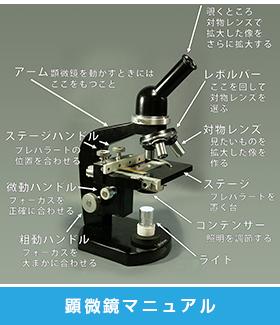 顕微鏡マニュアル